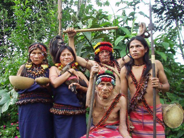 Baía da Traíção: Potiguaras recebem subvenção pela venda de mangaba