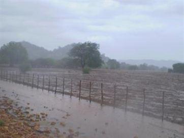 Resultado de imagem para imagens de chuva no sertao