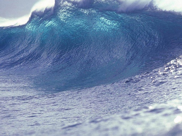 tsunami_wave-11061_640