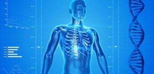 Dia Mundial da Osteoporose alerta para perigo da doença entre homens