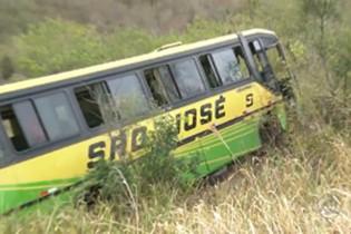 Ônibus tomba em ribanceira e abelhas atacam passageiros na Paraíba