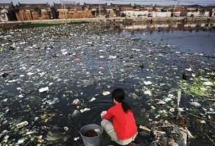 Onde está o nó da questão ecológica (I)?