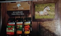 Guaraves lança rações para cavalo Equivita, veja vídeos e fotos