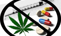 MP vai realizar mobilizações sociais contra as drogas em Areia e Alagoa Grande e mais 16 cidades, a partir de agosto