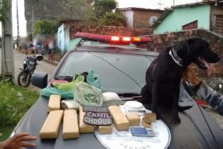 Polícia Militar apreende mais de 7,5 kg de maconha nos Bancários em JP