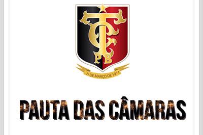 PAUTA_CAMARAS