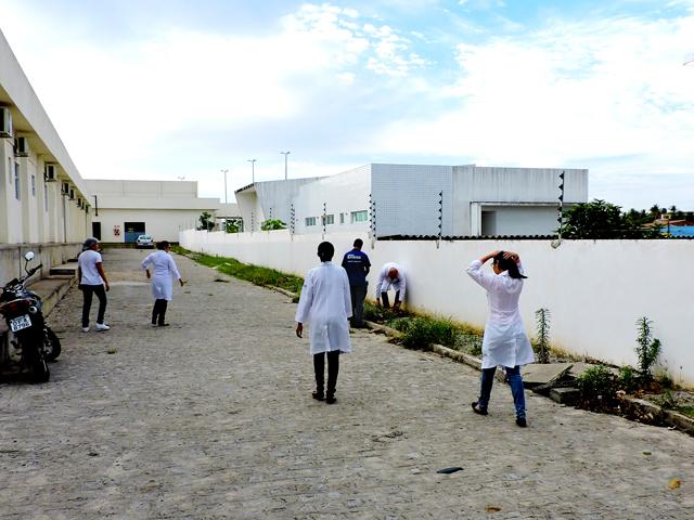 mutirão-dengue-3