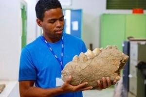 pesquisador-mostra-fosseis-de-mastodonte-encontrados-no-rn