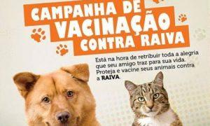 vacinacao_caes_gatos