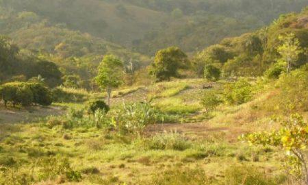 Comunidade quilombola Engenho Mundo Novo, em Areia - Créd Rodrigo Domenech de Souza (8)